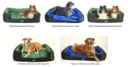 Large-80-cm-x-65-cm-GOLD-Loving-Care-Pet-Products-Ultra-Supreme-Lounger-Style-Pet-Bed-Completely-Reversible-RemovableReversible-Pillow-Soft-Microfibre-interior-Durable-Water-Resistant-Exterior-Complet