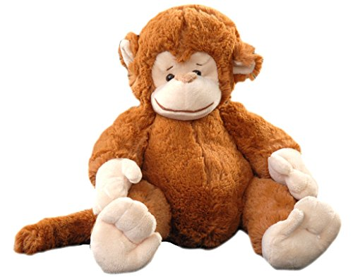 Indian Charm Mischievous Monkey
