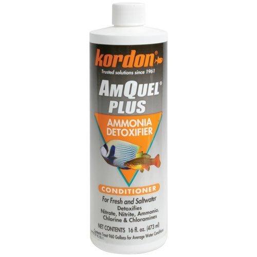 KORDON Amquel Plus for Aquarium, 16-Ounce by KORDON