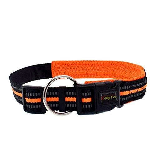Yuncai Einstellbar Reflektierend Haustier Hund Halsband Dauerhaft Hunde Leine Orange1 L