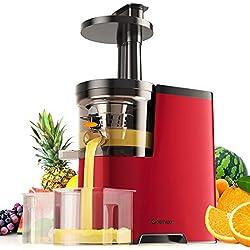 COSTWAY Extracteur de Jus,Centrifugeuse Fruits et Légumes en ABS+PC avec Vitesse : 60rpm,Bruit moins de 65dB,Interrupteur Etanche,2 Tasses,1 Brosse de Nettoyage 27 x 15 x 38,5CM