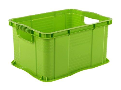 Rotho Agilo Aufbewahrungsbox 17.5 l, Kunststoff (PP), grün, 17.5 Liter / A4  (39 x 29 x 21,5 cm)