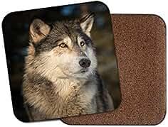 Canis Lupus - Posavasos, diseño de lobo, color gris