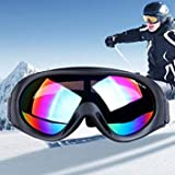 H1010 Unisex Dual Layers Anti-Fog Windprooof UV Protection Spherical Goggles with Adjustable Widened Strap (Frosted Black)
