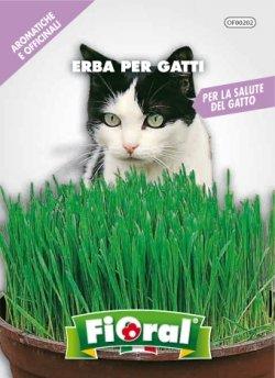 L'Ortolano Erba per gatti - Busta Sementi Aromatica