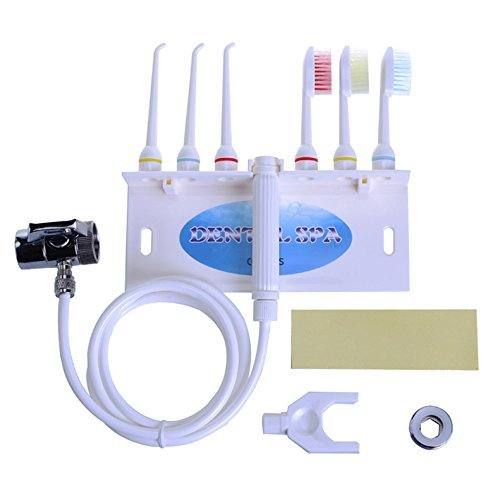 Denshine Personnel professionnel portable Hydropulseur dentaire Gum Spa Jet d'eau dentaire dents fil dentaire Brosse à dents ensembles Salon & Home