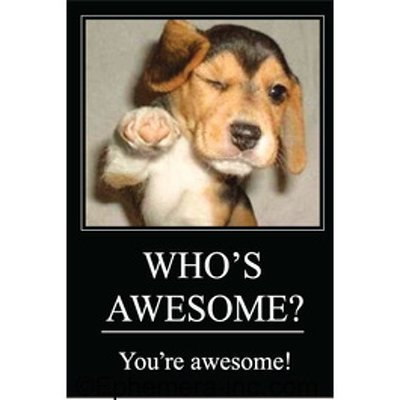 WHO'S AWESOME? You're awesome! Rechteckiger Magnet von Ephemera, Inc -