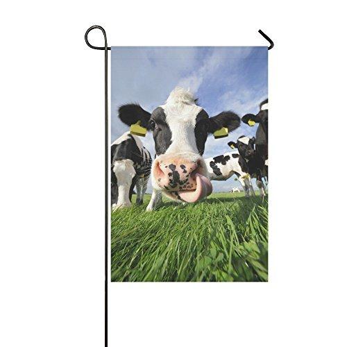 interestprint Funny Kuh Lecken seine Nase Polyester Garten Flagge Haus Banner Fahne Deko 30,5x 45,7cm, milchrind niedliche Tiere für Party Yard Home Outdoor Decor (Lecken Nase)