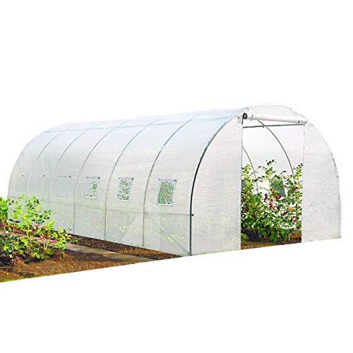 Probache - Grande Serre de Jardin Transparente 18 m² Tunnel 7 arceaux Pro galvanisé 6x3x2m