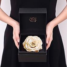 Coffret Cadeau Fleur Vivants Importés/Champagne Géants Botes De Roses/Cadeau D'anniversaire-A