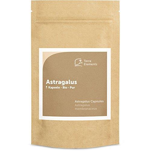 Asthma Tabletten (Terra Elements Bio Astragalus Kapseln (400 mg, 150 St) I Tragant I 100% rein I Vegan I Rohkost)
