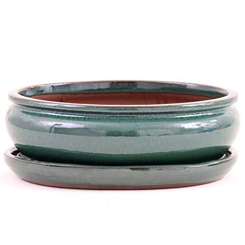 Bonsai 23125 Bol Ovale avec Soucoupe Vert 20 x 16 x 8 cm