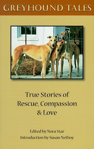 greyhound-tales-true-stories-of-rescue-compassion-and-love-by-nora-star-1997-07-01