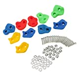 #6: Phenovo 10 Pcs Plastic Rock Climbing Wall Crab Stones Hands Feet Holds with Installation Hardware Kits Outdoor Sports Accessories