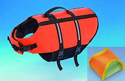 Schwimmhilfe XL 45 cm für Hunde mit Spielball Schwimmspielzeug Wurfspielzeug Schwimmweste Sicherheitsweste Hundeschwimmweste Apportierspielzeug zum Üben Rettungsweste Warnweste auch zur Physiotherapie geeignet mit Bringsel
