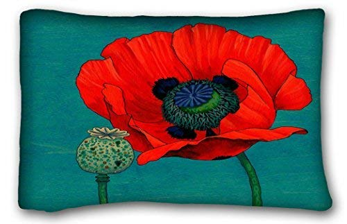 Jxrodekz Custom My Honey Pillow Red Poppy and Pod in Teal Pillow Case Cases Cover Cushion Covers Your Home Sofa Size 20x30 Inches Two Side - Poppy Pods