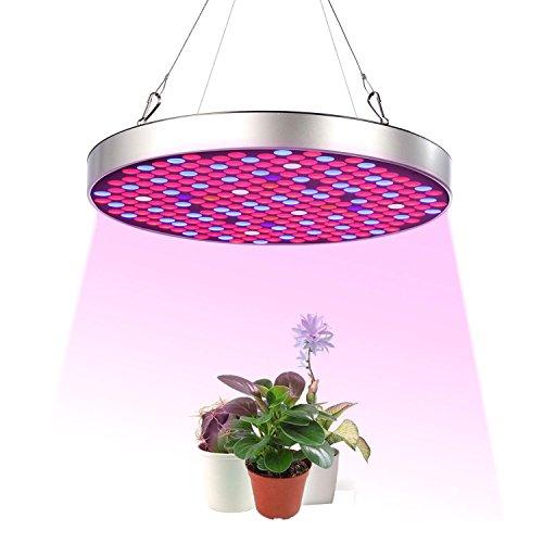 LED Grow Light, Pawaca 50W 250 LED pflanzenlampe Full Spectrum (UV/IR/Rot/Blue/White/Orange Licht) Pflanzenlicht Wachstum Led Grow Lampe für Gewächshaus/Growbox/Growtent 330mm*330mm*30mm (250-watt-led Licht Wachsen)