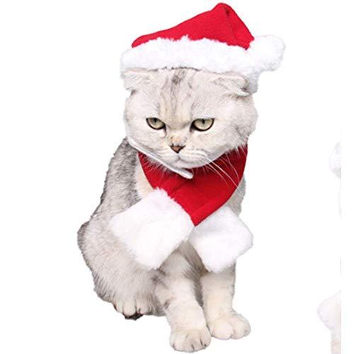 ANIAC Pet Weihnachten Elastic Santa Hat mit Schal Halsband für Katzen Hunde Welpen Kätzchen und Kleine Tiere rot, Small, rot