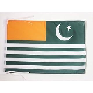 AZ FLAG Azad Kashmir Flag 18'' x 12'' cords - AJK Free Kashmir SMALL flags 30 x 45cm - Banner 18x12 in