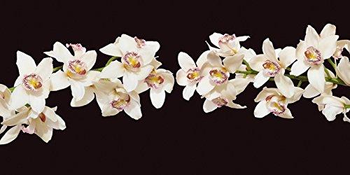 Leinwandbild Leinwandbild Orchidee