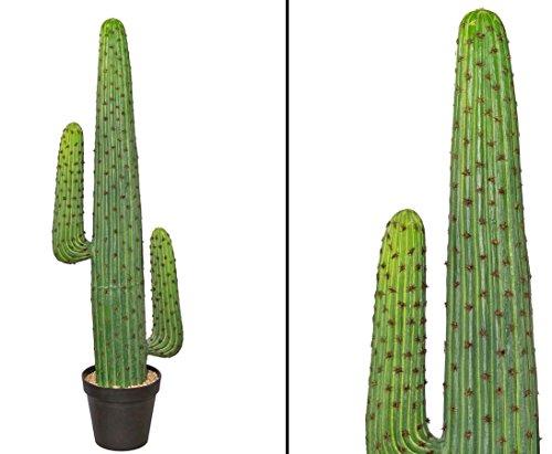 Kakteen wohnfuehlidee Kunstpflanzen