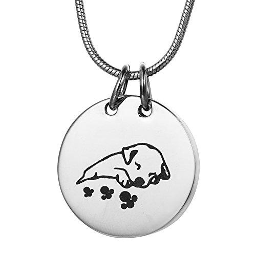 Dormir perro mascota urna collar, zcbrisk cremación joyas cenizas colgante de recuerdo