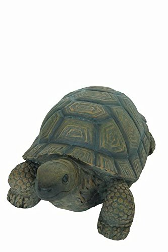 Hi- Line Gift 75629-D Dekofigur Schildkröte, 25,4 cm