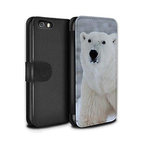 STUFF4 PU-Leder Hülle/Case/Tasche/Cover für Apple iPhone 5/5S / Weiß Eisbär Muster / Arktis Tiere Kollektion Weiß Eisbär