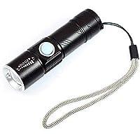 DARKBEAM - Linterna ultravioleta con USB UV (365 nm, LED recargable, detector de luz negra para orina de perro, manchas de mascotas y chinches)
