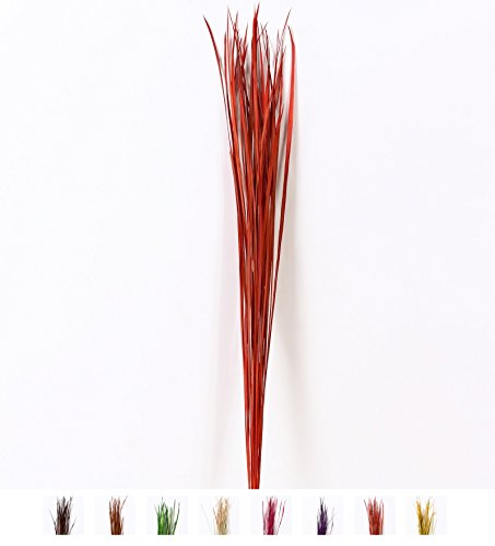 Fascíone di erba naturale colorata essiccata per vasi da terra mazzo di ramoscelli decorativi, 3x120 cm, Erba, Rosso