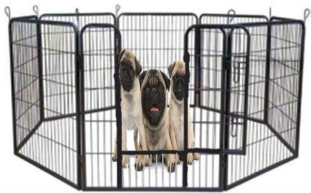 Welpenfreigehege YOUNG DOGS Größe L der Marke MYPETS Laufgitter Welpenauslauf Freigehege -