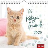 Für Katzenfreunde 2020: Dekorativer Wandkalender mit Monatskalendarium -