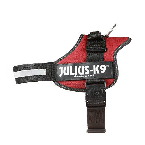 Julius-K9, 162BR-1, K9-Powergeschirr, Größe: 1, bordeaux