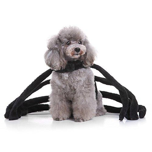 CautPY Halloween-Kostüm für Hunde, Spinnen-Tentakel, für Welpen, Partys, Katzen, Cosplay (Kostüm Hunde Für Spinne)