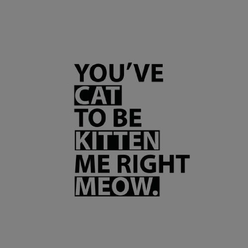 You've Cat to be Kitten me - Herren Langarm T-Shirt Dunkelblau