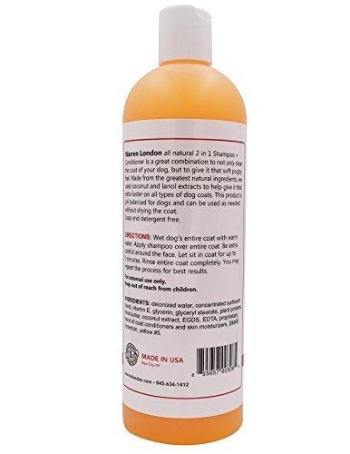 Warren London 100700 Coconut 2-in-1 Shampoo-Conditioner 2