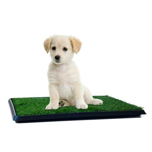 PETMAKER PAW Puppy Töpfchentrainer, für den Innenbereich -