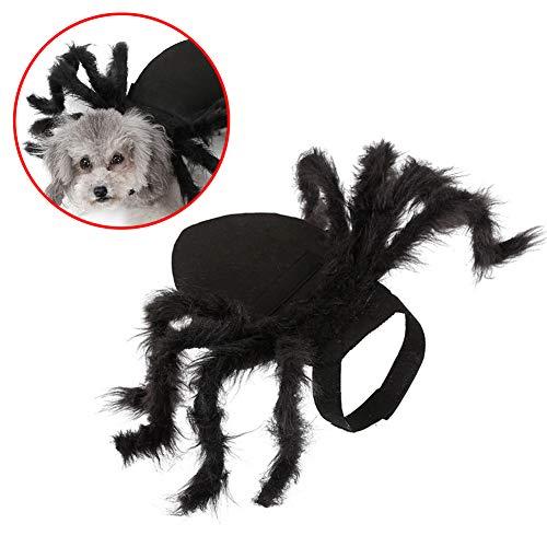 Kostüm Spider Halloween Hunde - C αγάπη Ζ Halloween Pet Spider Kostüm, Simulation Plüsch Spider Dressing Pet Kleidung für Hunde, Katzen