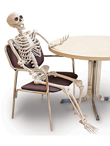 Decorazione di plastica dello scheletro di Halloween, decorazione d'attaccatura a forma di scheletro dell'osso del cranio umano a grandezza naturale del puntello del partito di Halloween