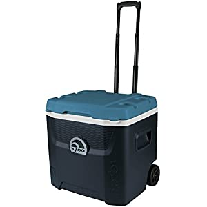 41pL1BJndRL. SS300  - Igloo 34067 Maxcold Quantum Roller Coolbox , Jet Carbon/Ice Blue , 49 Litre