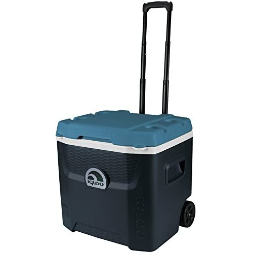 41pL1BJndRL. SS500  - Igloo 34067 Maxcold Quantum Roller Coolbox , Jet Carbon/Ice Blue , 49 Litre