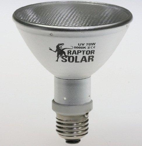 Par20 Spot (Econlux SolarRaptor 35W PAR20 HID-Spot-Strahler)