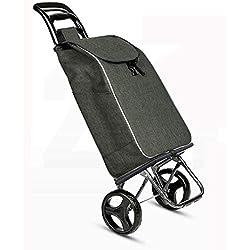 YHEGV Chariot Pliable portatif, Chariot à Domicile, Personnes âgées, Panier de Courses pour Femmes Enceintes, Chariot élévateur, Camion de déménagement A + (Couleur: C)