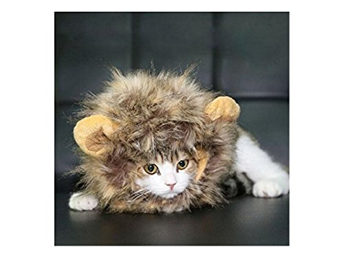 UabpT Haustier-Kostüm Perücke Lion Mane Kleid für Hunde Katze Halloween