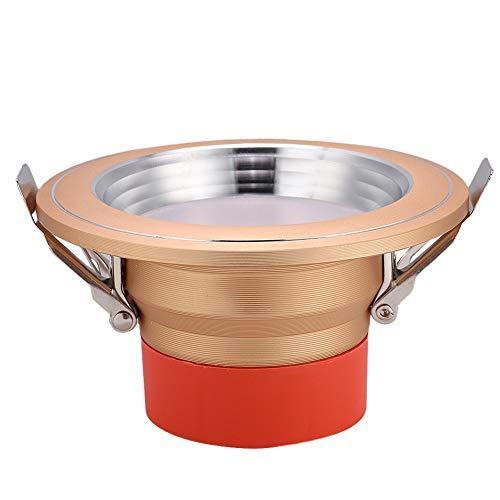 koulate Deckenverkleidung LED Lampe, AC85-265V Modernes Licht für Zuhause, Flur, Lager (1#) -