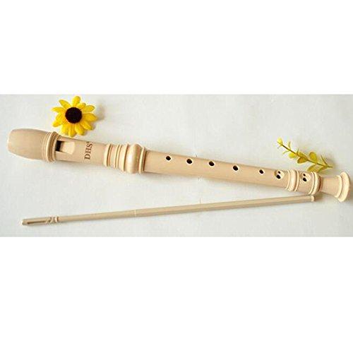 ETGtek(TM) Klarinette Kunststoff Sopran- / Sopran-Blockflöten 8 Löcher mit Reinigungs-Stock für Flöte Anfänger und Kinder