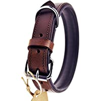 [Gesponsert]Schnüffelfreunde Hundehalsband aus Leder (L - 36-45cm, Braun)