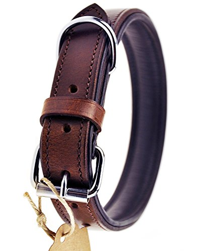 Schnüffelfreunde Hundehalsband aus Leder (XL - 46-55cm, Braun)