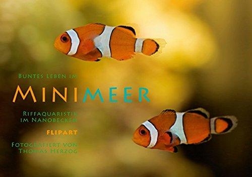 MINIMEER (Tischaufsteller DIN A5 quer): Riffaquaristik im Nano-Aquarium (Tischaufsteller, 14 Seiten) (CALVENDO Tiere) [Taschenbuch] [Mar 24, 2014] Herzog, Thomas und www.bild-erzaehler.com, k.A.