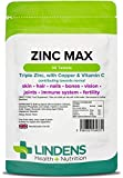 Lindens Zinc Max Tablets | 90 Pack | Provides 300% NRV dose and fortified with Vitamin C & Copper to contribute towards healthy hair, skin, nails, vision & hormone balance